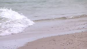 Henes Park Beach Closed Due to Bacteria