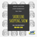 Weekly Shopping Show Auction