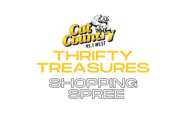 THRIFTY TREASURES SHOPPING SPREE