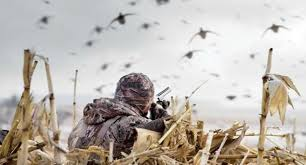 Waterfowl Hunters Urged to Use Safety, Wear Life vests on the Water this Season