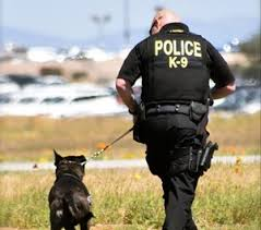 Marinette County Sherriff could be adding another K9 to their team.