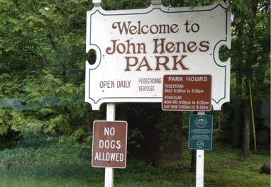 Emerald Ash Borer disease is a cause for concern at Henes Park